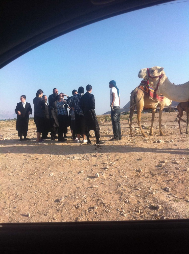 Photo of Orthodox Jews and Bedouin Negotiating Price of Camel Ride near Jericho